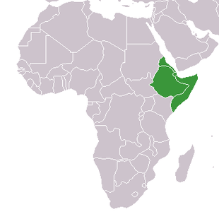 Africa-countries-horn