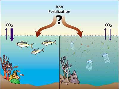 editorial_121029_1_1_ocean_iron