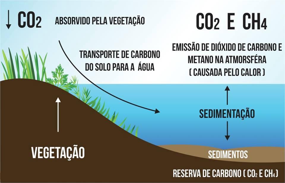 emiss